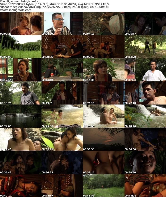 tigermountaingirldvdscreens อีสาวเสือภูเขา (2012)